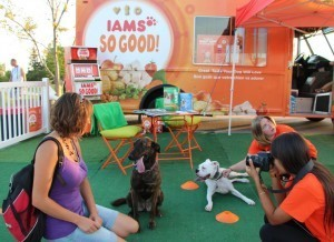 Photo shoot at the IAMS Cafe