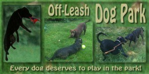 Telling-Tails-Pet-Food-Pet-Supplies-Chelmsford-Azilda-Off-Leash-Dog-Park-Banner-